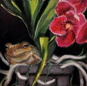 Frog in orchid pot